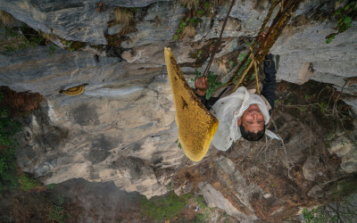 Last Honey Hunter 12 credit Renan Ozturk