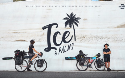 ICE & PALMS_cover